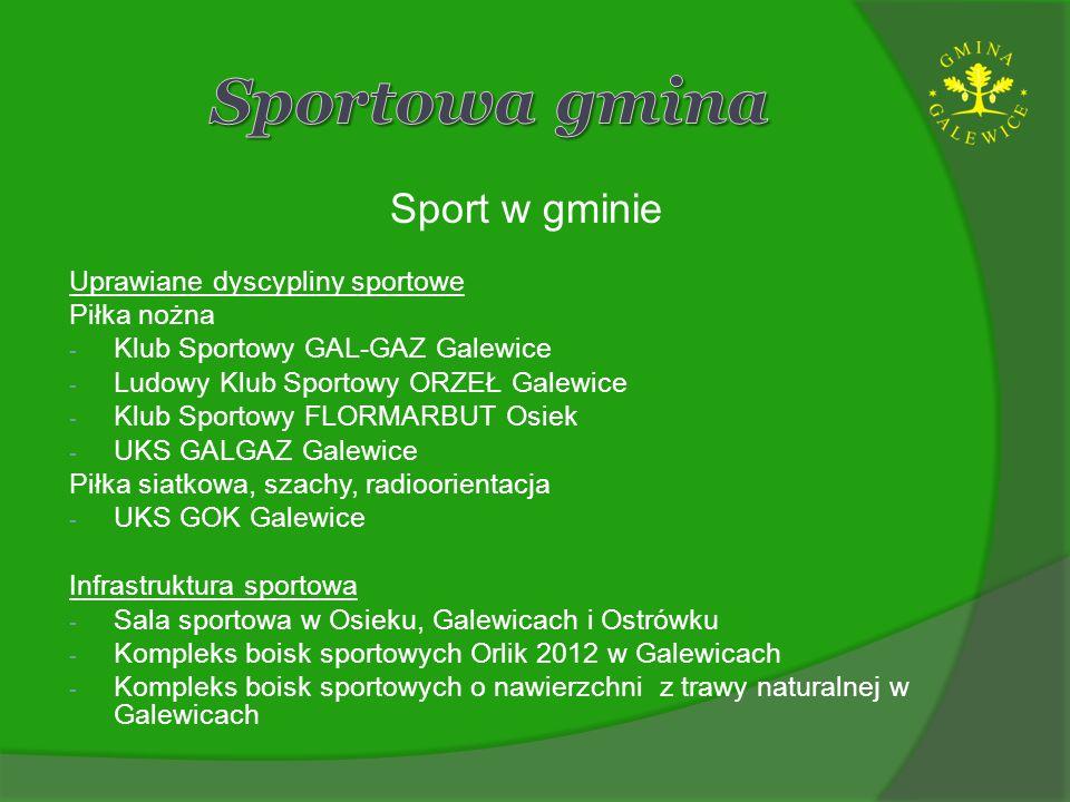Sportowa gmina Sport w gminie Uprawiane dyscypliny sportowe