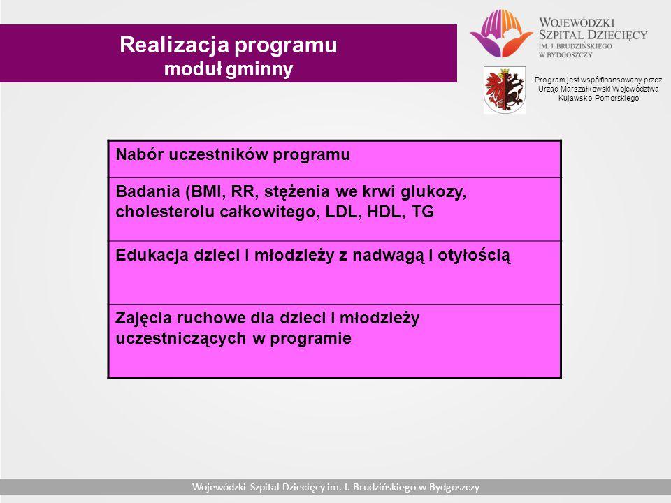 Realizacja programu moduł gminny Nabór uczestników programu
