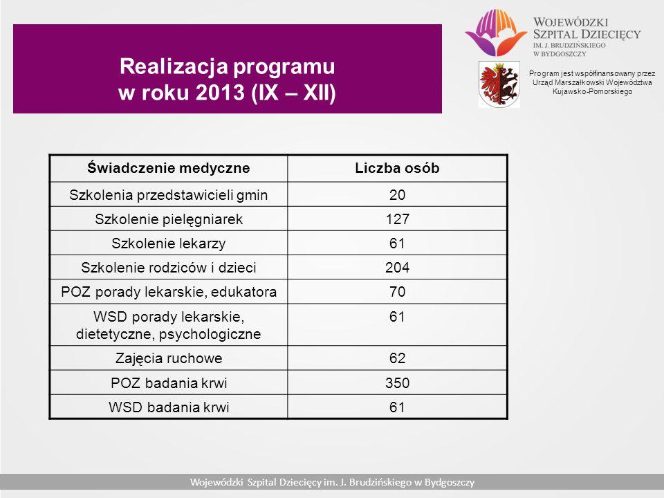 Realizacja programu w roku 2013 (IX – XII)