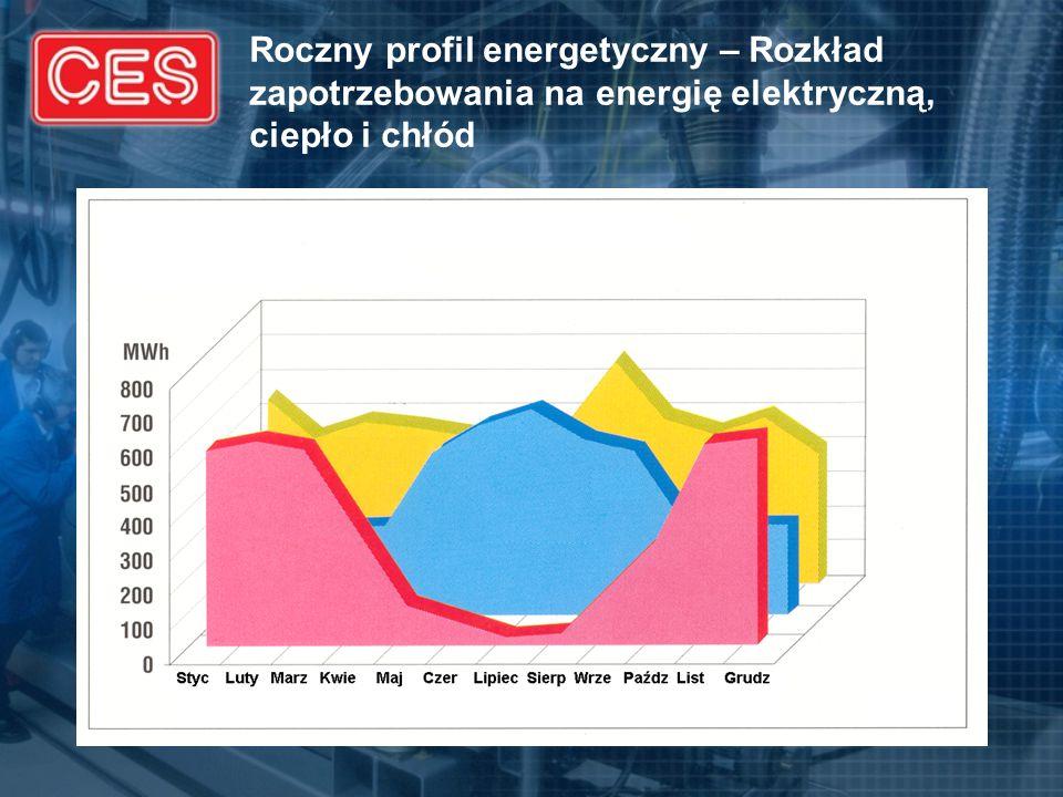 Roczny profil energetyczny – Rozkład zapotrzebowania na energię elektryczną, ciepło i chłód