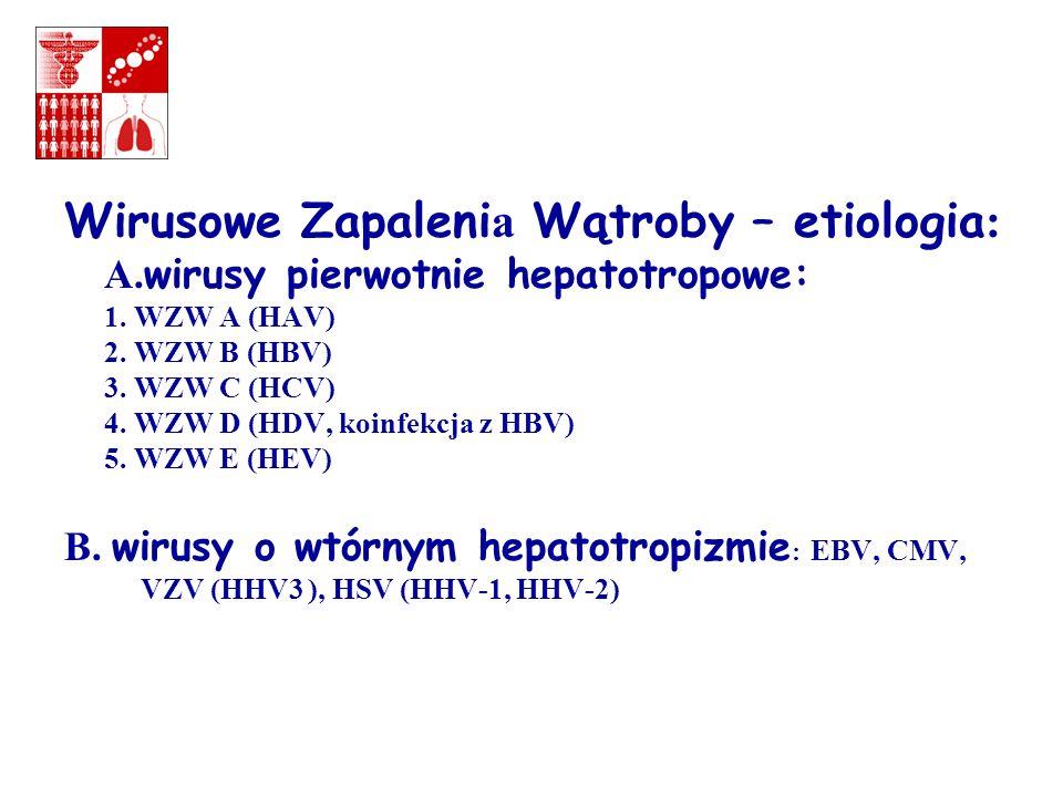 Wirusowe Zapalenia Wątroby – etiologia: A