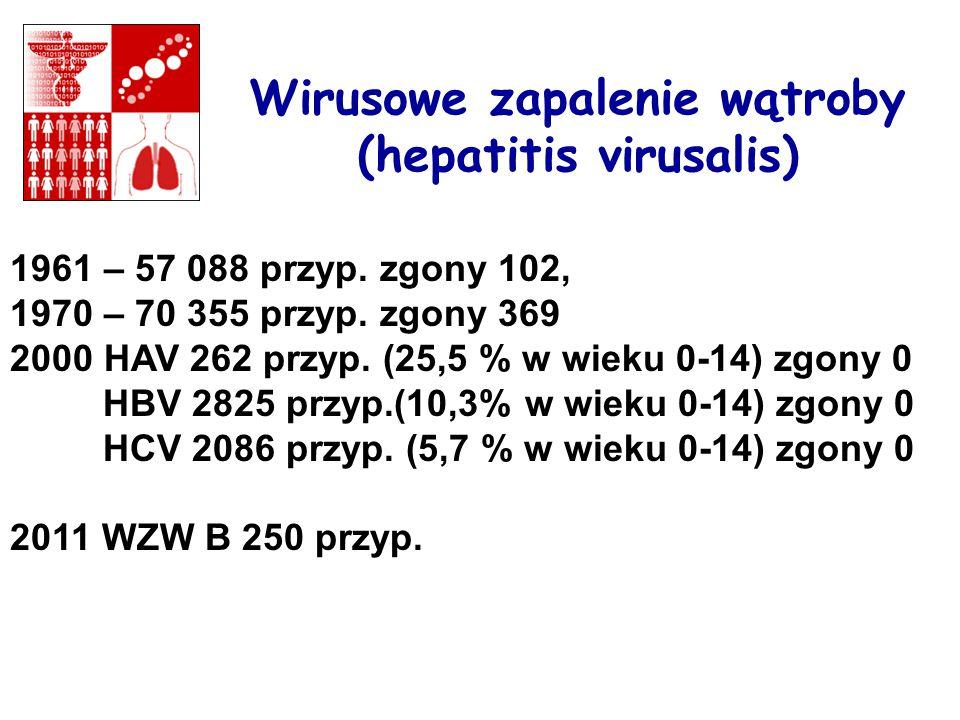 Wirusowe zapalenie wątroby (hepatitis virusalis)