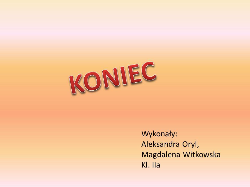 KONIEC Wykonały: Aleksandra Oryl, Magdalena Witkowska Kl. IIa