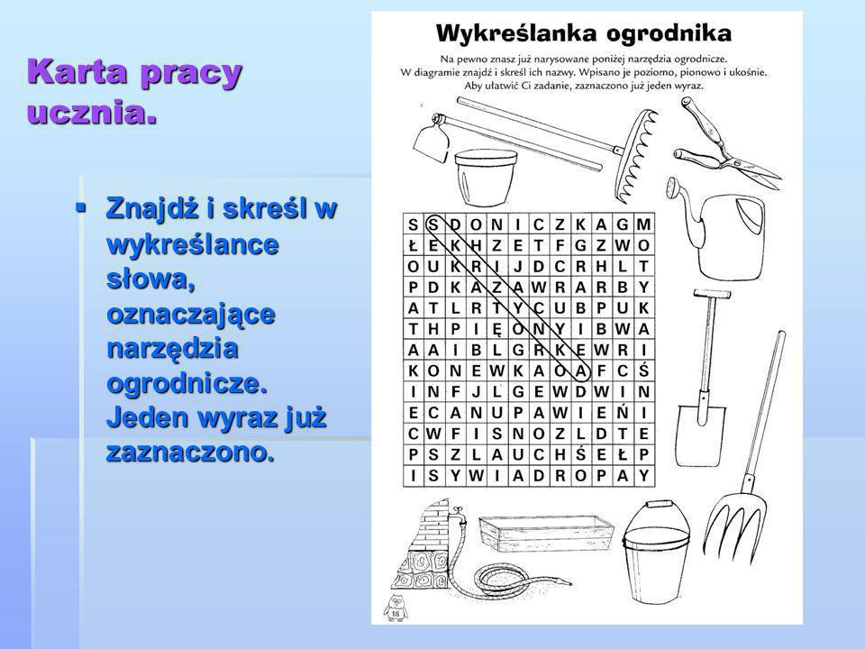 Karta pracy ucznia. Znajdź i skreśl w wykreślance słowa, oznaczające narzędzia ogrodnicze.