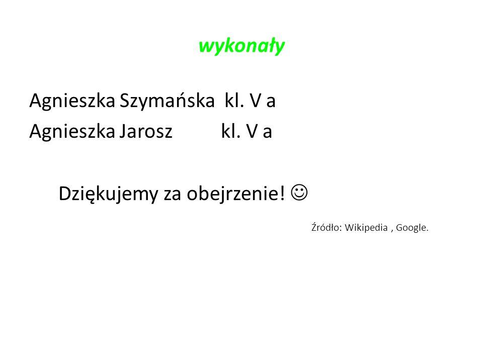 wykonały Agnieszka Szymańska kl. V a Agnieszka Jarosz kl.