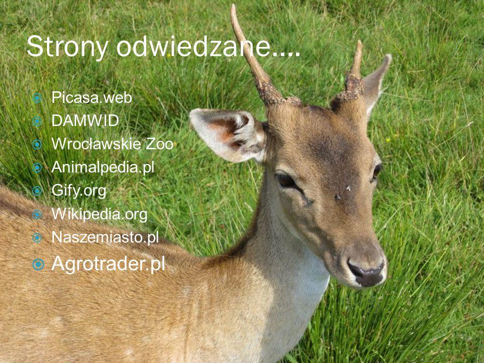 Strony odwiedzane…. Agrotrader.pl Picasa.web DAMWID Wrocławskie Zoo