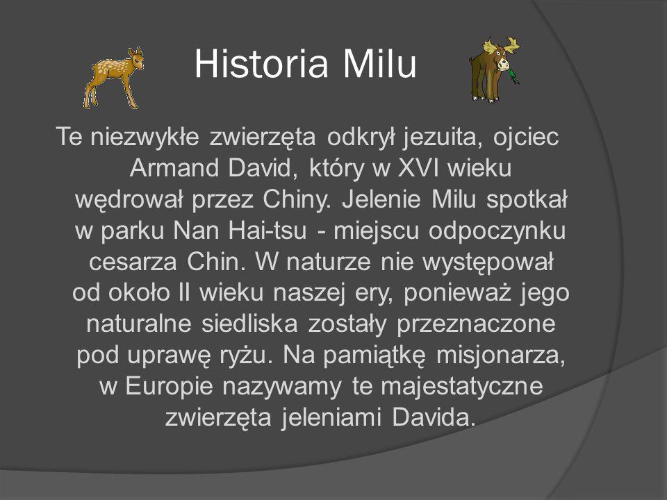 Historia Milu