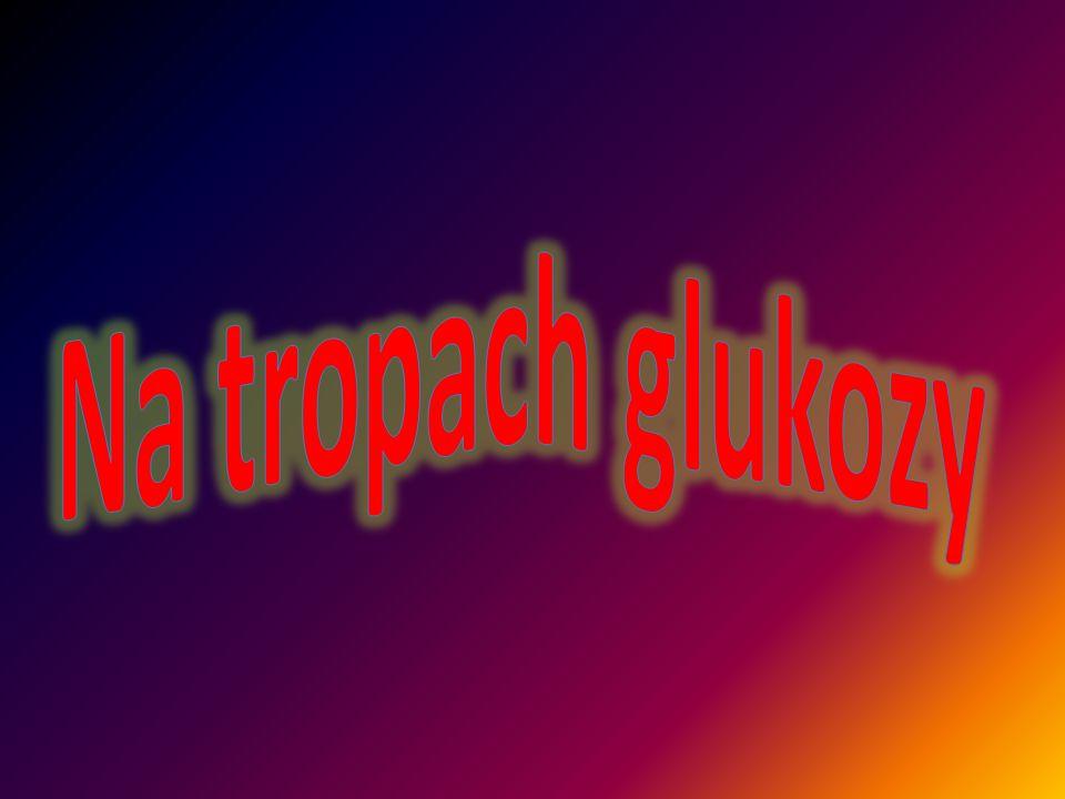 Na tropach glukozy