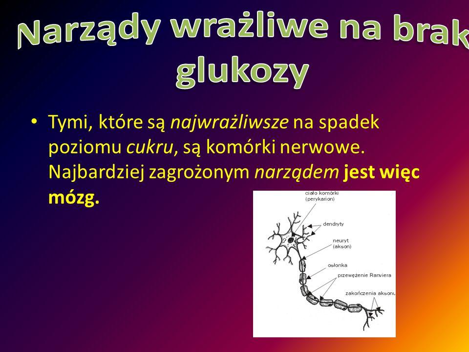 Narządy wrażliwe na brak glukozy