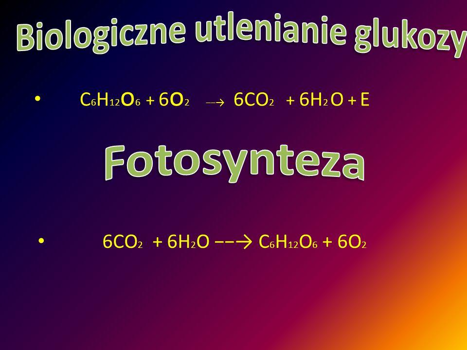 Biologiczne utlenianie glukozy