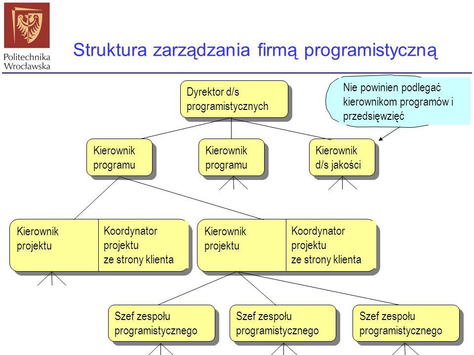 Struktura zarządzania firmą programistyczną