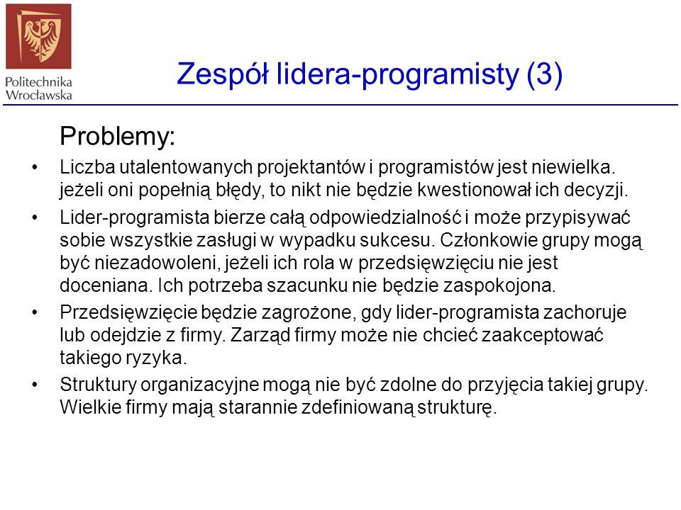 Zespół lidera-programisty (3)
