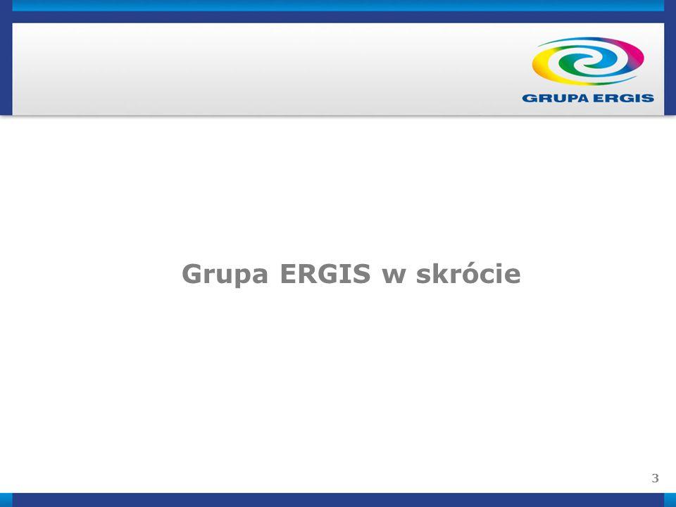 Grupa ERGIS w skrócie