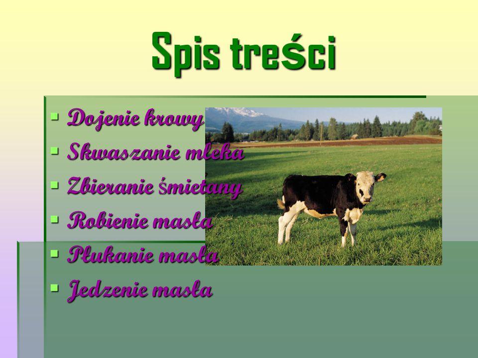 Spis treści Dojenie krowy Skwaszanie mleka Zbieranie śmietany