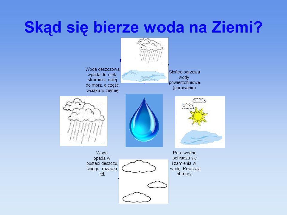Skąd się bierze woda na Ziemi