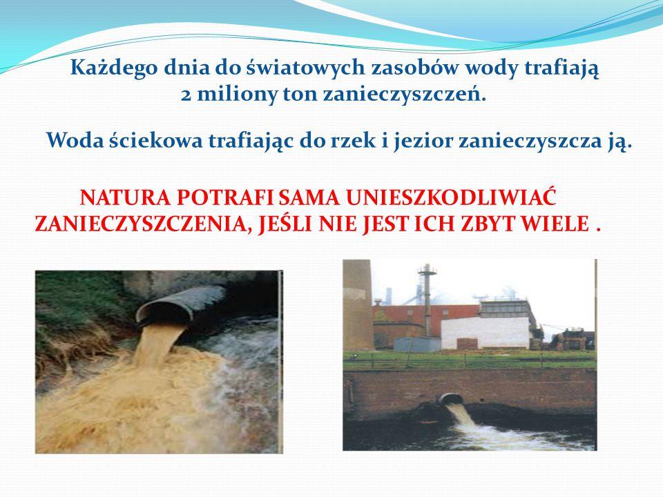 Każdego dnia do światowych zasobów wody trafiają