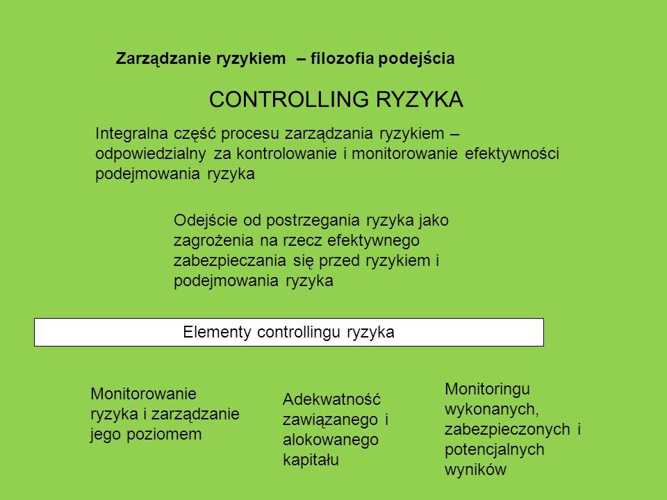 Elementy controllingu ryzyka