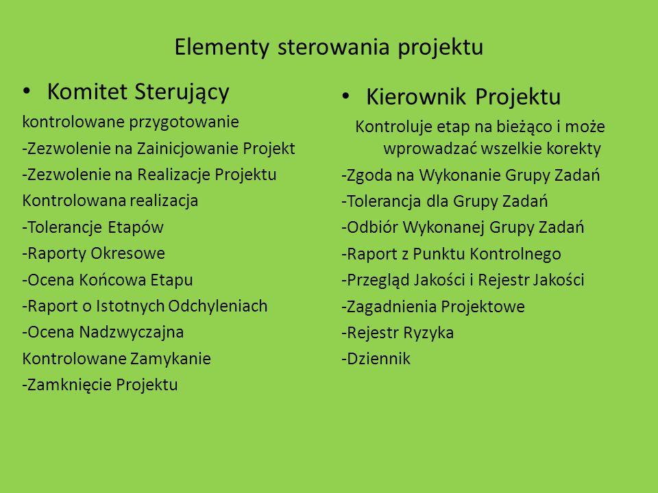 Elementy sterowania projektu