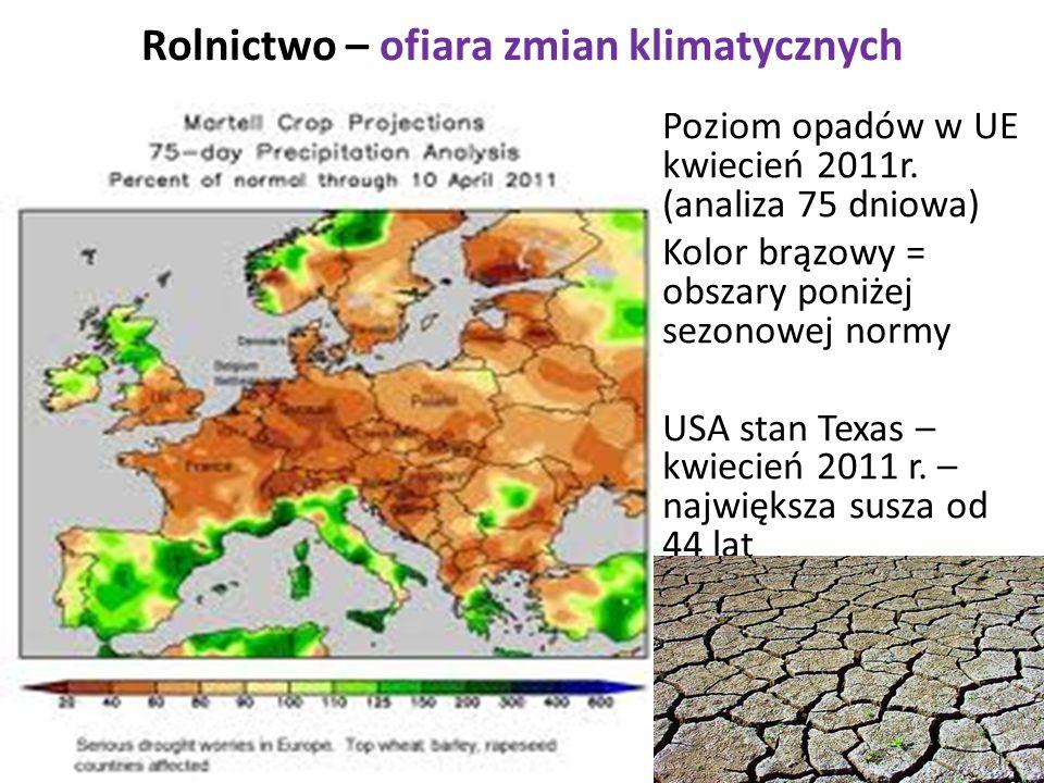 Rolnictwo – ofiara zmian klimatycznych