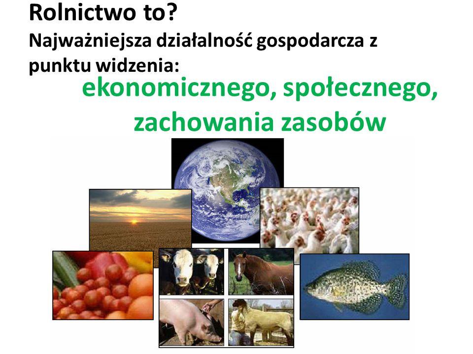 Rolnictwo to Najważniejsza działalność gospodarcza z punktu widzenia: