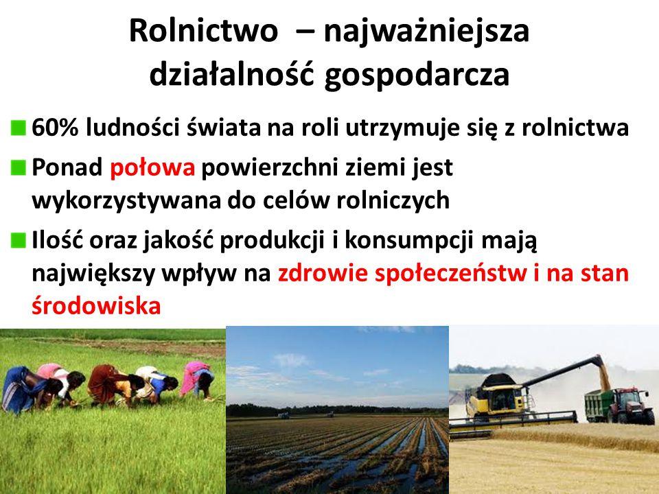 Rolnictwo – najważniejsza działalność gospodarcza