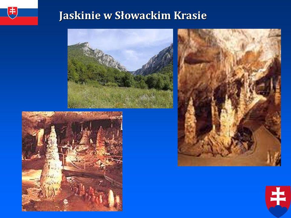 Jaskinie w Słowackim Krasie