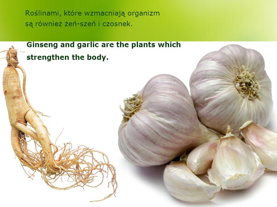 Roślinami, które wzmacniają organizm