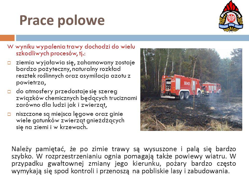 Prace polowe W wyniku wypalenia trawy dochodzi do wielu szkodliwych procesów, tj.: