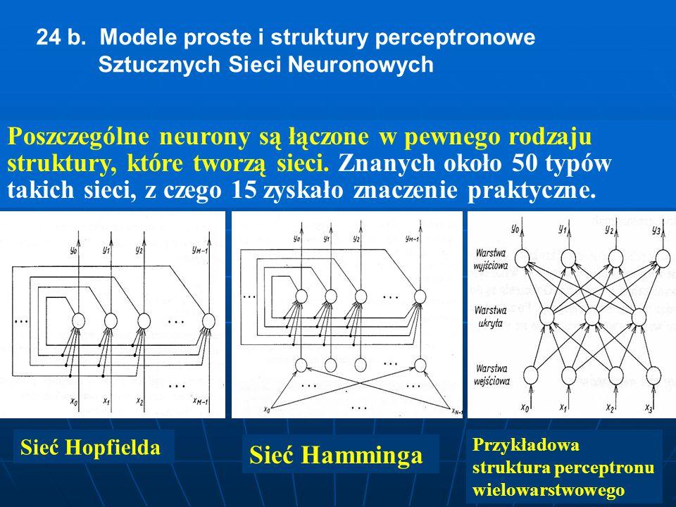24 b. Modele proste i struktury perceptronowe