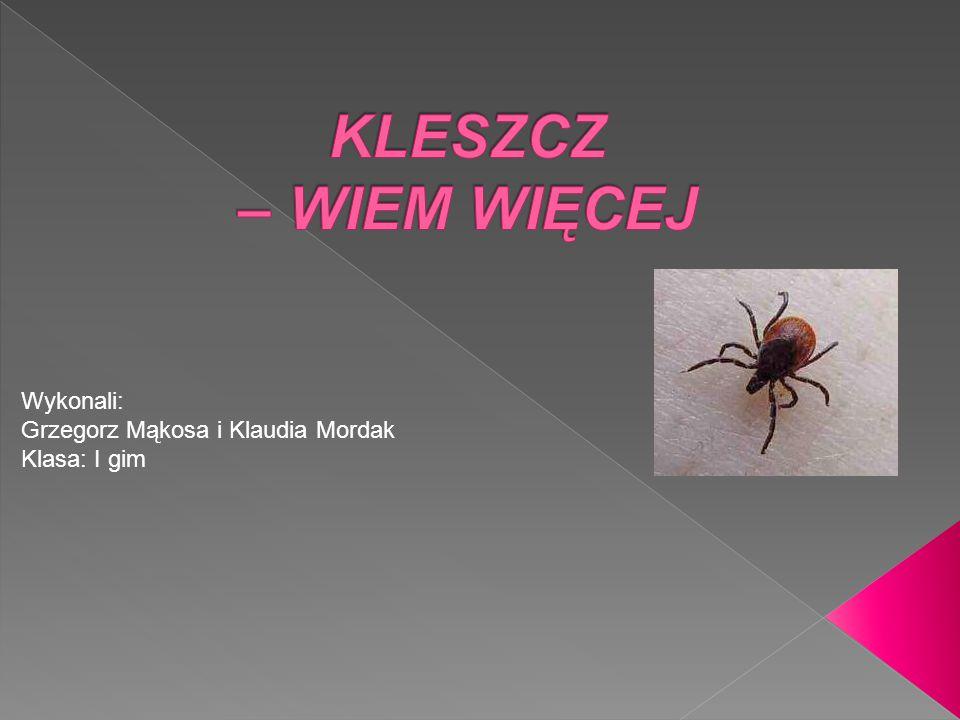 KLESZCZ – WIEM WIĘCEJ Wykonali: Grzegorz Mąkosa i Klaudia Mordak