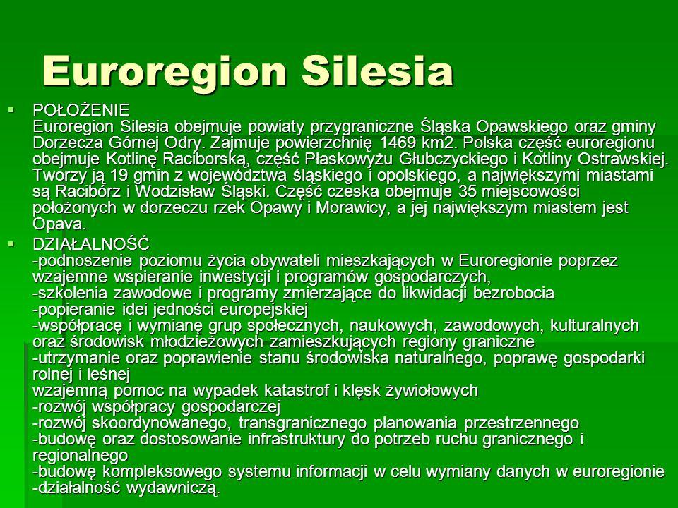 Euroregion Silesia