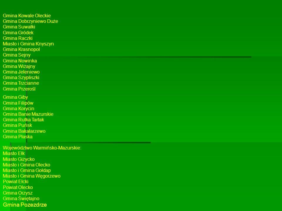 Gmina Kowale Oleckie Gmina Dobrzyniewo Duże Gmina Suwałki Gmina Gródek Gmina Raczki Miasto i Gmina Knyszyn Gmina Krasnopol Gmina Sejny Gmina Nowinka Gmina Wiżajny Gmina Jeleniewo Gmina Szypliszki Gmina Trzcianne Gmina Przerośl