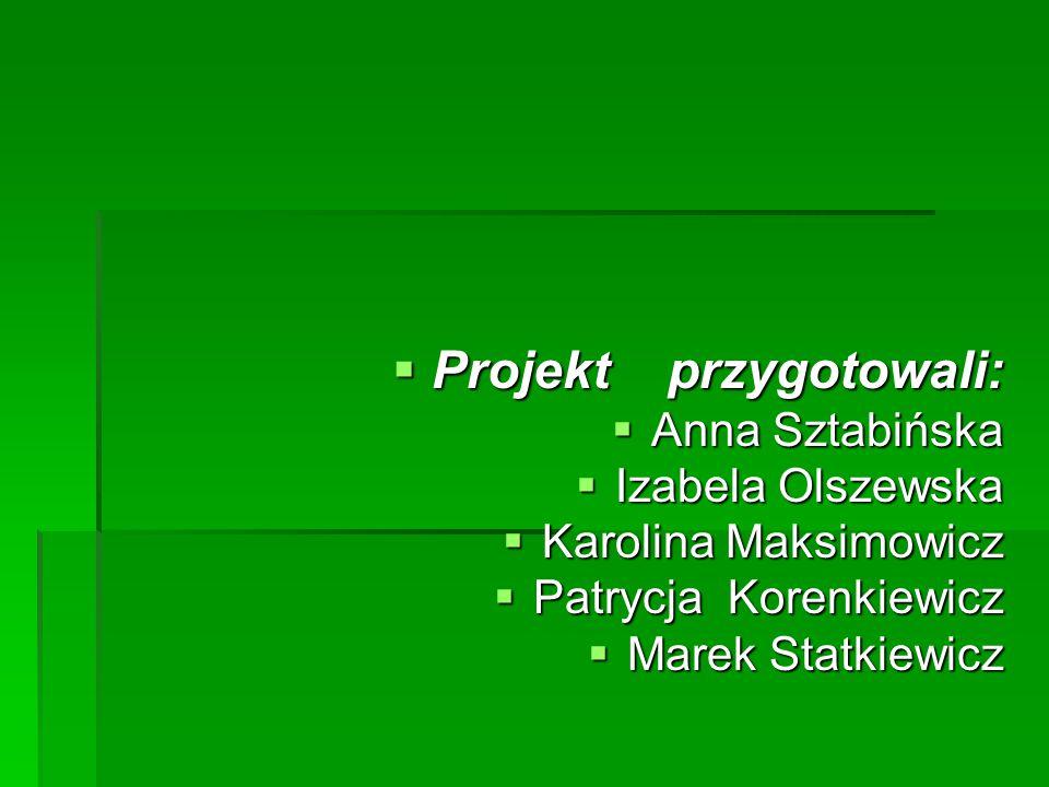 Projekt przygotowali: