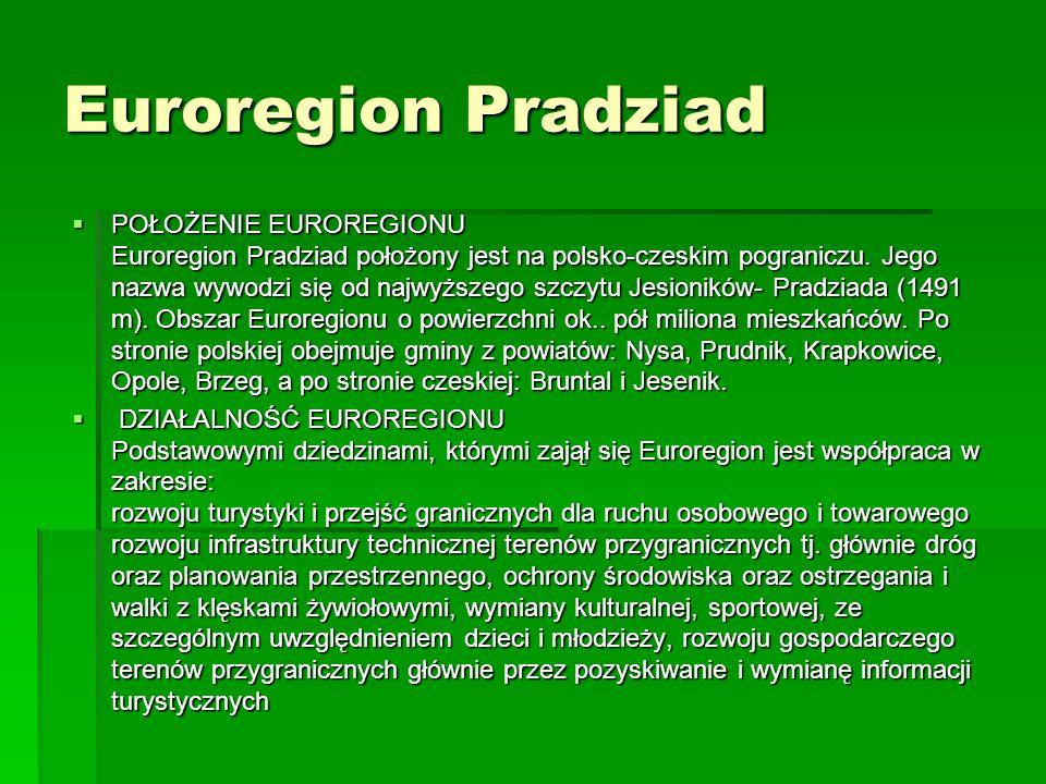 Euroregion Pradziad