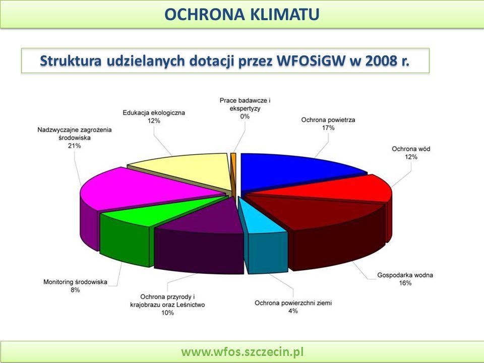 Struktura udzielanych dotacji przez WFOSiGW w 2008 r.