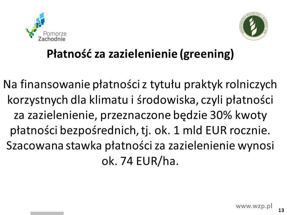 Płatność za zazielenienie (greening)