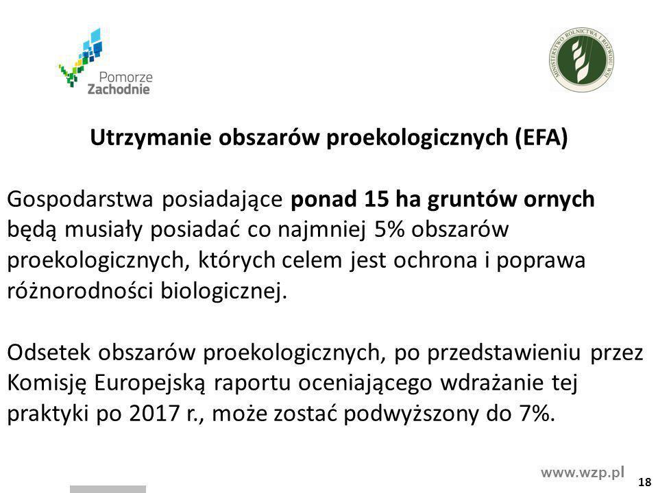 Utrzymanie obszarów proekologicznych (EFA)