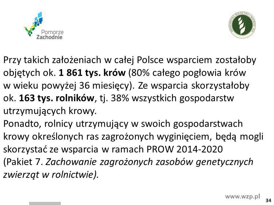 Przy takich założeniach w całej Polsce wsparciem zostałoby objętych ok