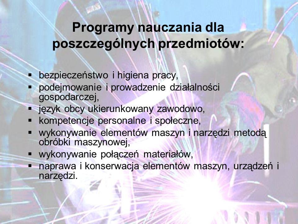 Programy nauczania dla poszczególnych przedmiotów: