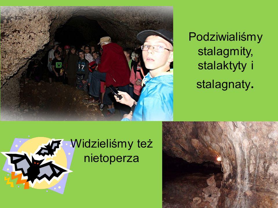 Podziwialiśmy stalagmity, stalaktyty i stalagnaty.