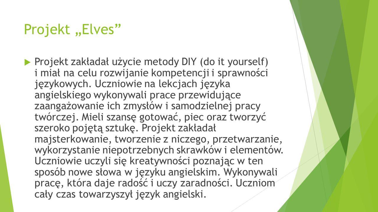 "Projekt ""Elves"