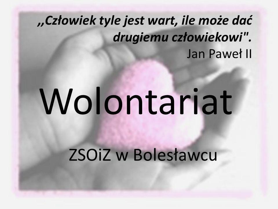 Wolontariat ZSOiZ w Bolesławcu