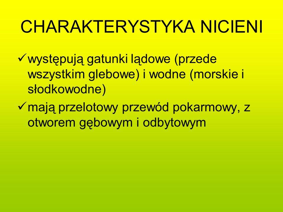 CHARAKTERYSTYKA NICIENI