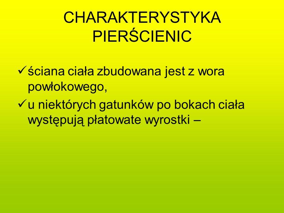 CHARAKTERYSTYKA PIERŚCIENIC