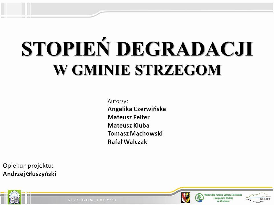 STOPIEŃ DEGRADACJI W GMINIE STRZEGOM Angelika Czerwińska