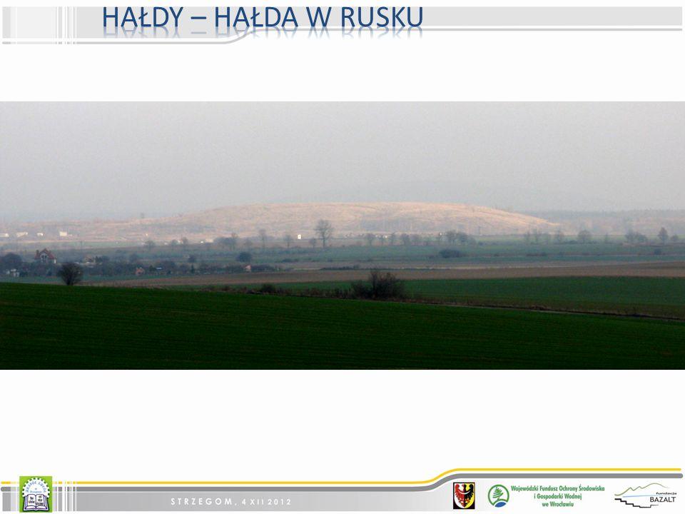 Hałdy – Hałda w rusku Najwieksza w naszej gminie hałda przy kopalniach gliny w Rusku/Jaroszowie