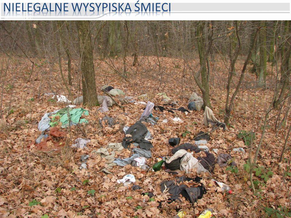Nielegalne wysypiska śmieci