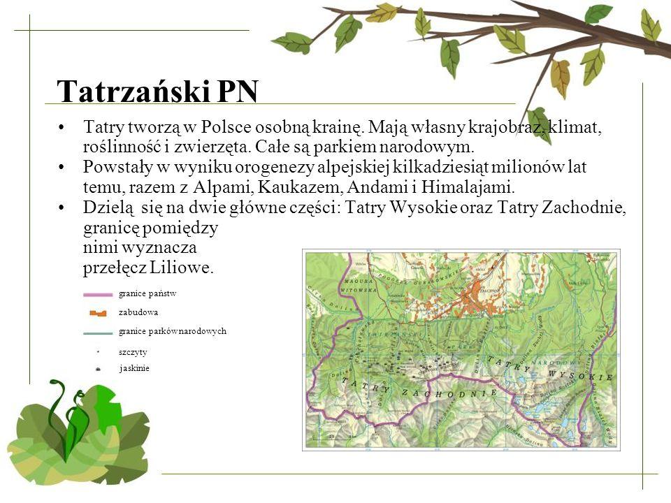 Tatrzański PN Tatry tworzą w Polsce osobną krainę. Mają własny krajobraz, klimat, roślinność i zwierzęta. Całe są parkiem narodowym.