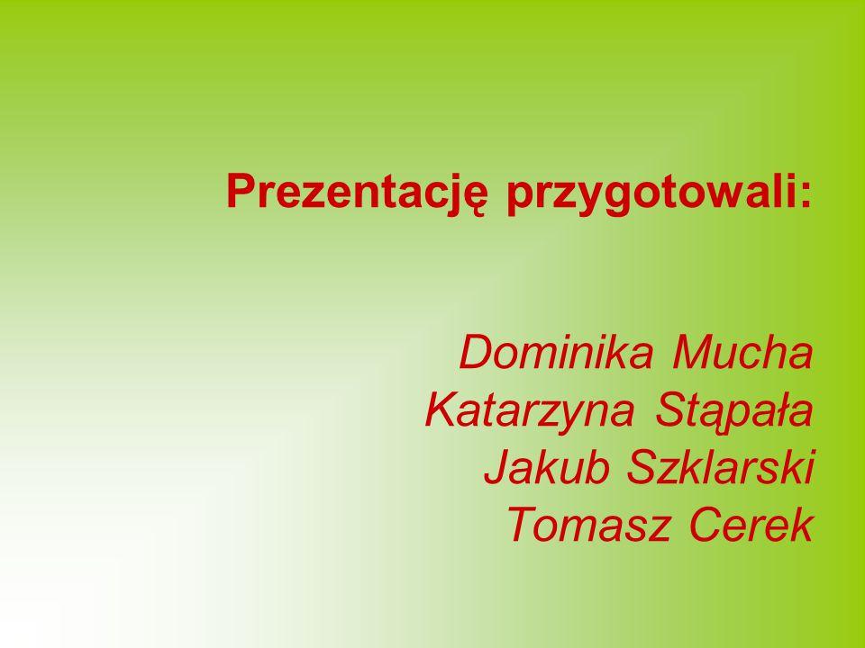 Prezentację przygotowali: Dominika Mucha Katarzyna Stąpała Jakub Szklarski Tomasz Cerek