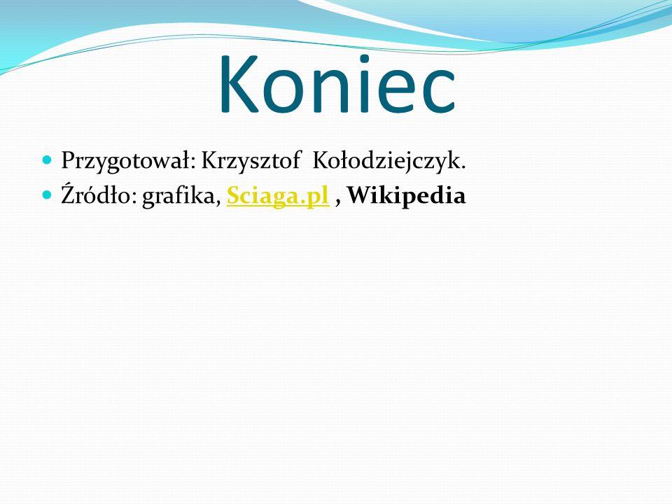 Koniec Przygotował: Krzysztof Kołodziejczyk.